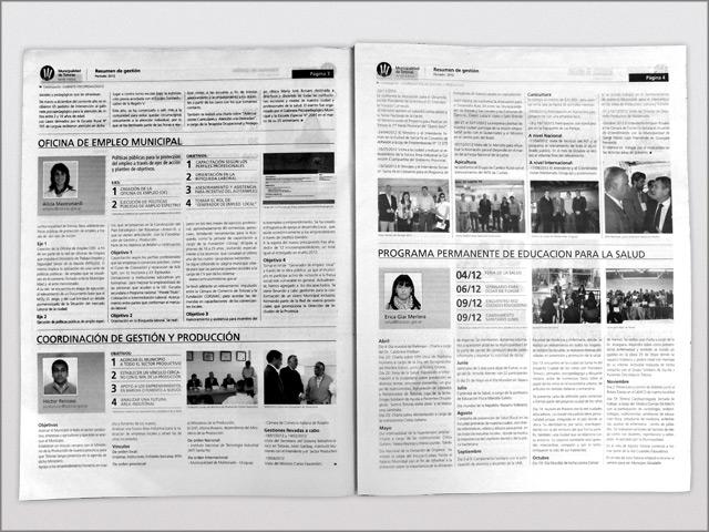 Diseño de Diario Resumen de Gestión - Páginas